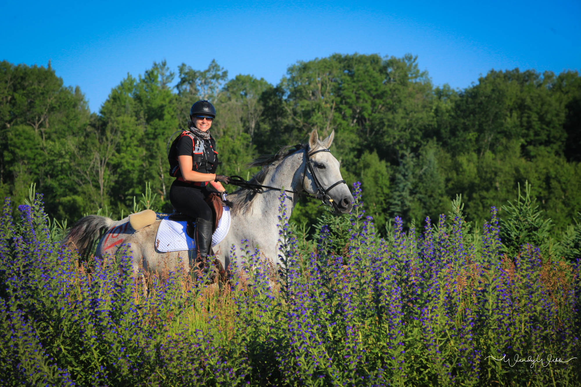 On The Horse Featured Rider Sarah Cuthbertson