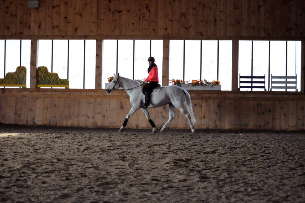 Aimee's first circle of trot.