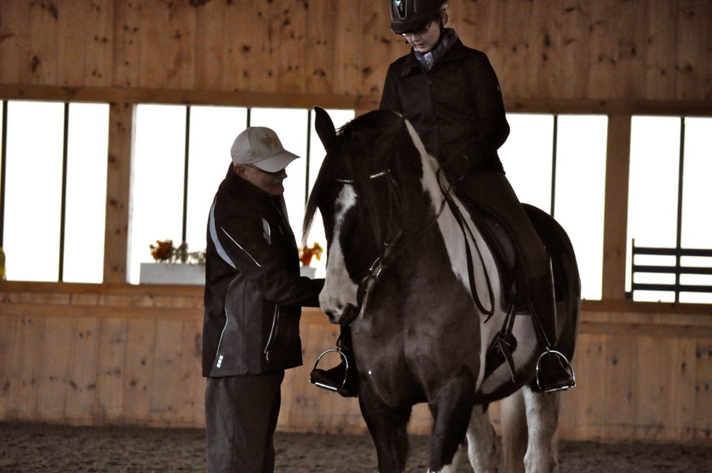 Hans also used acupressure on the horses in the clinic to enable them to move and perform more easily!