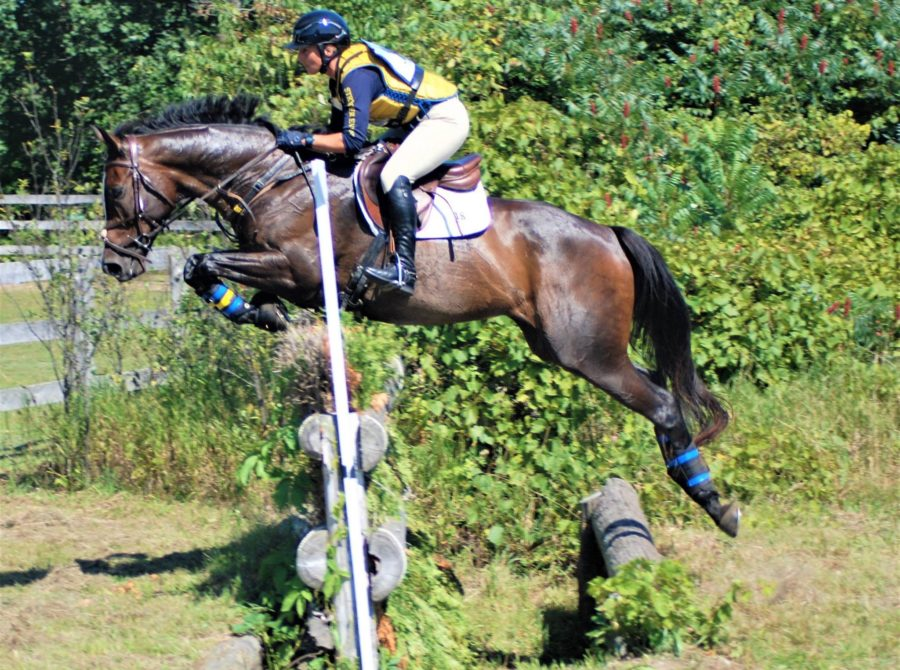 An Introduction To Eventing in Ontario - Equestrian Ontario Magazine